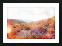yellow flower field on the mountain with summer light bokeh abstract Picture Frame print