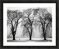 Trio Picture Frame print