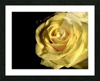 Yellow dew Picture Frame print
