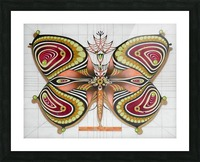 butterfly from the twenties Picture Frame print