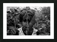 Guyana Child of the jungle  Picture Frame print