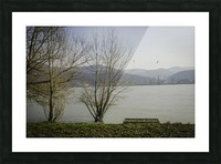 Spring at the River  Picture Frame print