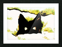 Kitten in snow Picture Frame print
