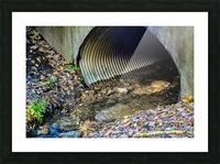 Secret Tunnel Picture Frame print