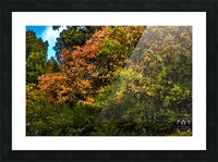 Nature in Fall Picture Frame print
