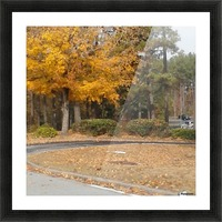 Georgia Fall Picture Frame print