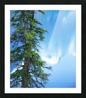 Natural order Picture Frame print