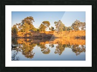 Tranquil river bank reflections at sunrise Picture Frame print