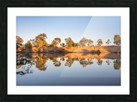 Reflections on the Murray River Picture Frame print