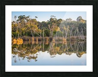 Evening river bank with glassy reflection Picture Frame print