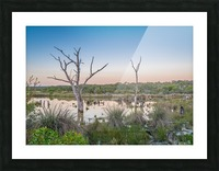 Wetlands at sunset with smoke haze. Picture Frame print
