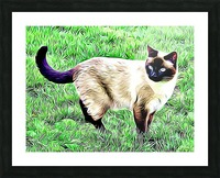 CAT3 Picture Frame print