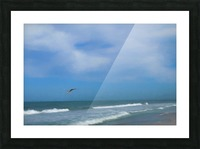 Flying Solo Picture Frame print