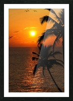 Unknown Paradise Picture Frame print