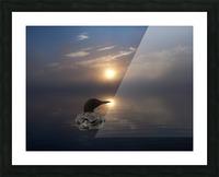 LoonAtSunrise_1527463927.19 Picture Frame print