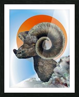 Ram Picture Frame print