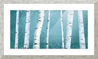 birch tree Picture Frame print