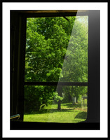 sofn-0E9AC9CD Picture Frame print