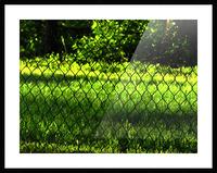 sofn-8DCA7EEB Picture Frame print