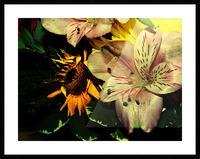 E (1) Picture Frame print