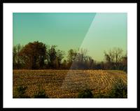 sofn-840D8D25 Picture Frame print