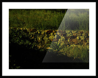 G (9) Picture Frame print