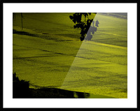 sofn-330900A2 Picture Frame print