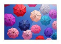 Colorful umbrella Picture Frame print