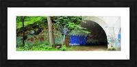 001460_Nikon_ 7 15 12RB3 1 resized Picture Frame print