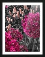Collection Vinyasa 1 Impression et Cadre photo