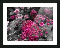 Collection Vinyasa .2 Impression et Cadre photo
