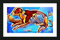 Dog_Splash_OSG Picture Frame print
