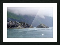 Alaska Scenery Pictures of Icebergs  Picture Frame print