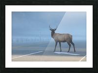 Elk Crossing Picture Frame print