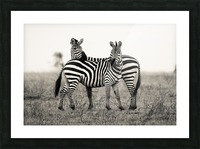 DUO Picture Frame print