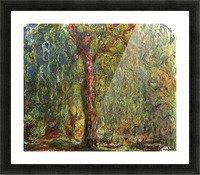 The Willow Picture Frame print