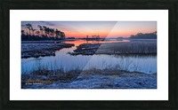 Black Duck Pool - APC-376 Picture Frame print