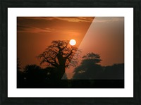_49R8851 Picture Frame print