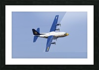 A C-130 Hercules of the Blue Angels flight demonstration squadron. Picture Frame print