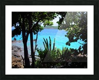 Tropical Waters 1 Picture Frame print
