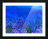 Coral Reef Picture Frame print