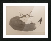 Gray Fox Looking to the Skies Picture Frame print