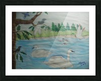 Swan Pond Picture Frame print