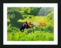 Cummington Cows Picture Frame print
