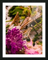 Offerings  Picture Frame print