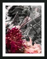 Offerings  Impression et Cadre photo