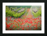 Red district Picture Frame print