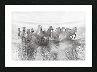 Illusion of power (13 horse power though) Picture Frame print