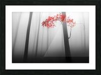 illusion Picture Frame print