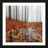 Puddle Picture Frame print